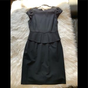 J Crew NEW dress